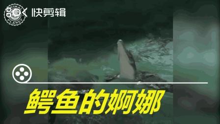 搞笑动物短视频: 鳄鱼的婀娜