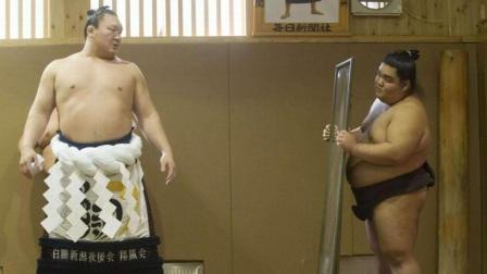 胖子也能这么狠! 日本相扑的力量与速度!