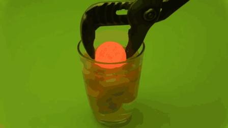 高温铁球放入鸡蛋液中, 鸡蛋液会被烫熟吗? 睁大眼睛看好了!