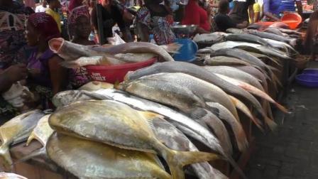 非洲真的都是像我们看到的这么穷吗 这里的人为什么却天天吃海鲜