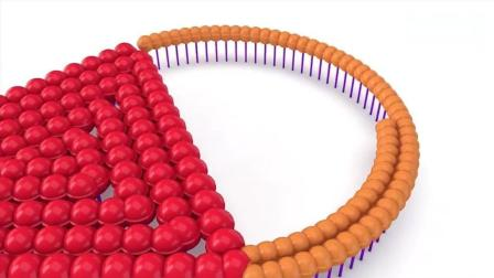 亲子早教动画 3D彩色棒棒糖旋转围成彩虹冰淇淋图案