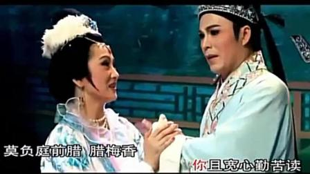 潮剧【男儿有泪不轻弹】王美芳 林初发《柳玉娘》选段