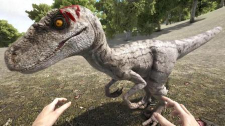 侏罗纪伶盗龙! 成群结队的狩猎高手、方舟生存进化1439