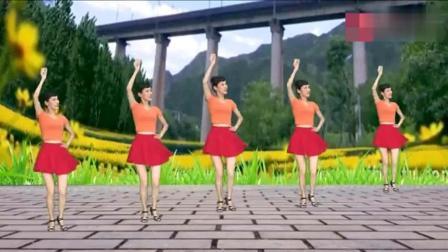 流行舞曲广场舞《的士高》欢快节奏, 动感舞步, 轻松学会