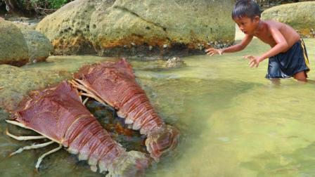 居住在海边的熊孩子, 捕捉到的扇尾虾, 岸上烤着吃, 简直太美味了
