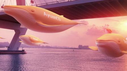 海口的天空不只是蓝, 还有鲸鱼在飞