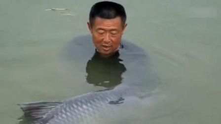 见过这么大的鱼吗? 鱼太大钓主立马放生许愿