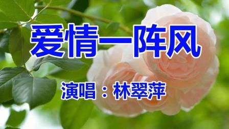 林翠萍《爱情一阵风》经典老歌