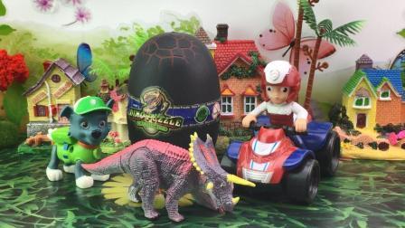 百变奇趣蛋玩具 狗狗巡逻队莱德队长拆恐龙蛋玩具