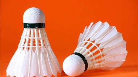 UG产品设计 UG羽毛球画法
