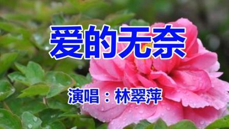林翠萍《爱的无奈》经典老歌