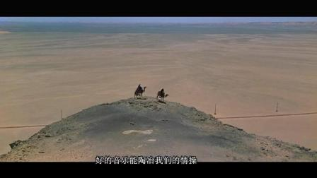 一首流行歌曲《沙漠骆驼》, 再也不是那么默默无闻, 网络的神奇