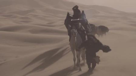 女王版沙漠骆驼