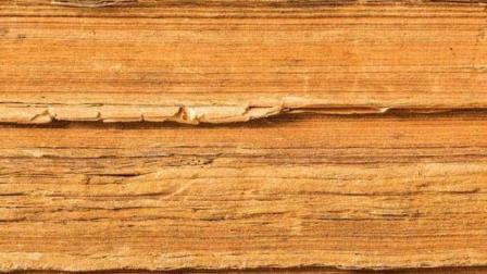 """火星表面惊现""""车辙""""! 科学家: 这可能是火星人的活动痕迹!"""