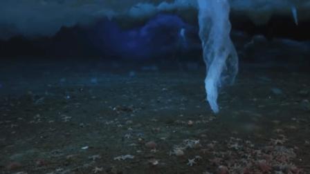 死亡冰柱: 海底最可怕的杀手, 遇到它的生物没有一个可以生还!