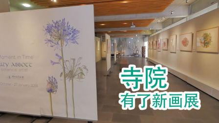 寺庙有了新的美术展览(新西兰 Harold Vlog 398)