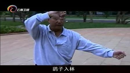 四种内家拳的出现, 这标志中华武术的成熟, 还有很多文化内涵! 这些拳法出自动物身上!