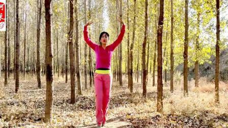 阿采原创广场舞 02:47 落叶小树林里跳《广场舞》好美, 优美舞姿, 真是看不够