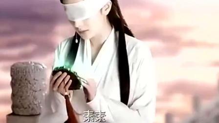 素素跳诛仙台阿离哭闹不止 夜华听到素素的话急忙赶来却没救下她!