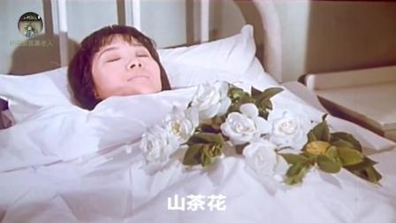 怀旧影视金曲  1981年国产老电影《楚天风云》插曲《山茶花》-吴雁泽