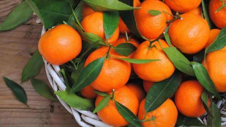 橘子全身都是宝, 别只吃肉了! 现在知道还不晚