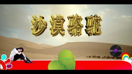 沙漠骆驼-展展与罗罗