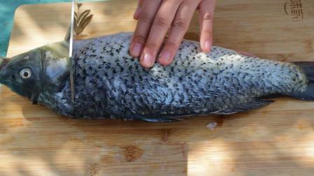 爱吃鱼要收藏, 学会这创意做法, 简单好吃又入味, 3斤大鱼不够吃