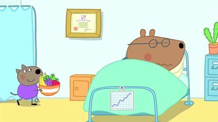 小猪佩奇: 棕熊医生生病了, 大家一起去照顾他