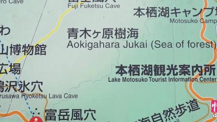 只是个普通的森林, 为什么被禁止入内? 因为这里是青木原树海, 情旅自驾游系列视频