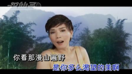 韩宝仪-《丁香花》, 韩宝仪深情演绎唐磊的歌, 值得一听!