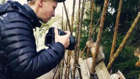 见识一下野生动物怎么拍,这才叫专业!