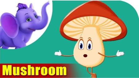 阿布英文儿歌 蔬菜篇 蘑菇 Mushroom