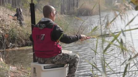 深秋钓鲤鱼, 用多长的鱼竿好? 钓鱼高手为你分析, 不知道就亏了