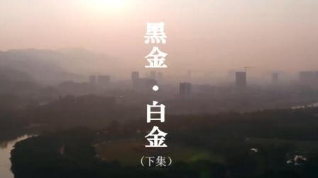 《大变局之黑金·白金》财经纪录片(下集)