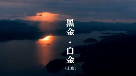 《大变局之黑金·白金》财经纪录片(上集)