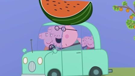 谁做的大西瓜? 小猪佩奇全家载着它, 急急忙忙的去干嘛? 小猪佩奇