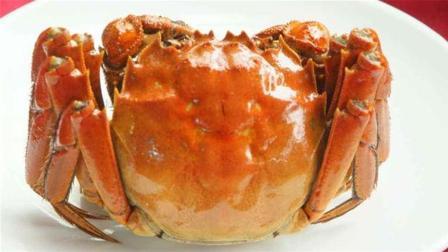 大闸蟹好多人还不会吃, 教你正确吃法, 再也不怕吃螃蟹会寒了!