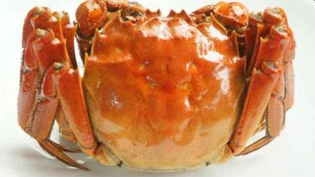大闸蟹好多人还不会吃, 方法太简单了, 步骤详细吃螃蟹不会寒