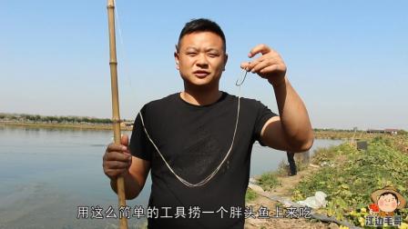 大头鱼有很多种做法, 但唯有这种做法永远吃不腻!