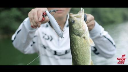 老虎路亚 一步一杀(大号)排骨老虎 路亚铅笔 路亚水面系 钓鱼教学 垂钓方法 简简单单