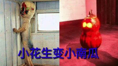 【波少】万圣节更新介绍小花生变小南瓜【SCP秘密实验室】