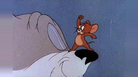 猫和老鼠: 猫和老鼠一起看电影