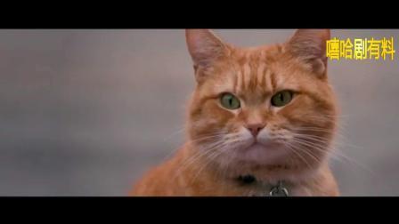 《流浪猫鲍勃》预告片!
