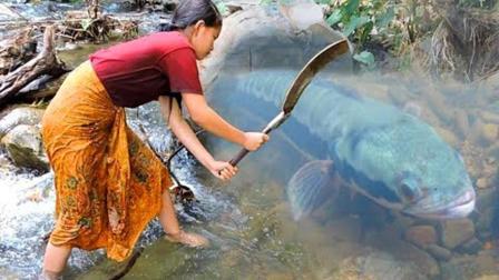 农村妹子河里捕鱼, 意外捉到一条大黑鱼, 上岸直接烤着吃, 真香!
