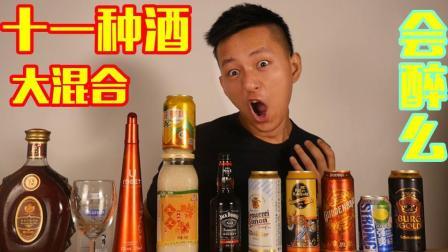 不作会死 2018:十一种酒混合起来会怎么样? 会更容易醉一点么?        9.3