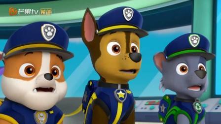 汪汪队立大功5: 莱德跟狗狗们全都换上了火车制服, 去抓猫咪啦