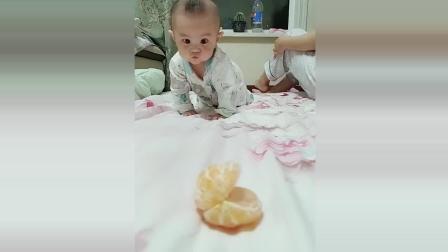 小宝宝为了吃到前面的水果, 接下来宝宝的反应太可爱了!
