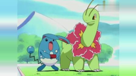 神奇宝贝: 妙蛙种子和杰尼龟时隔多日后相聚, 这对CP上来就秀恩爱