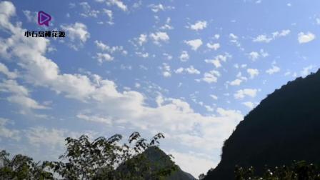 桃花源姐姐带大家去大山里看桂花树, 月柿树, 空气清新到不想回