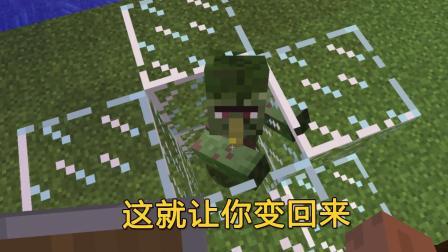 我的世界124: 这僵尸村民真怪, 张叔的金苹果都救不活是咋回事?